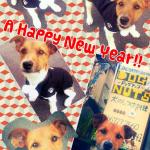 謹賀新年 2014